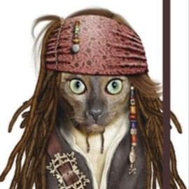 Takkoda - Pirate: Small Famous Faces Journal (Pets Rock)