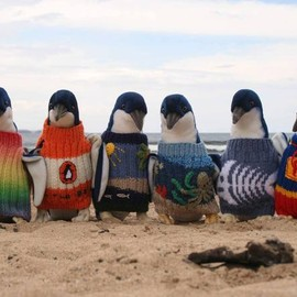 crafting for good - knit for penguins