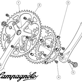 Campagnolo gears illustration