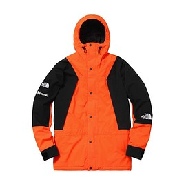 Supreme × THE NORTH FACE - mountain light jacket