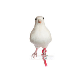 PUEBCO - Artificial Birds Dove(S)