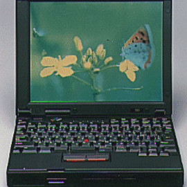 IBM - ThinkPad 535