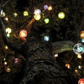 Lights for the trees outside
