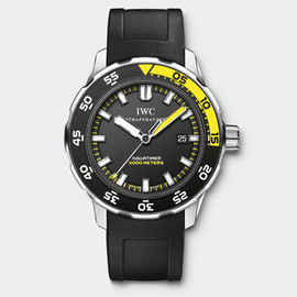 IWC - IW356810 Watch Front