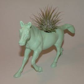 Live air plant in mint green horse planter. Ideal gift for teenage girl or kids room decor.