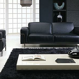 Sofa -LEATHER EDITIONS-