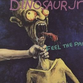 Dinosaur Jr. - Feel The Pain