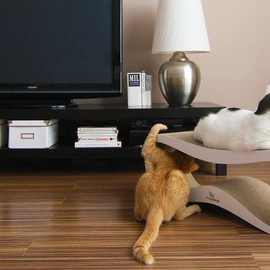 myKitty - LUI - furniture for cats