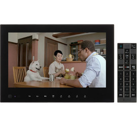 Softbank - PhotoVision TV 202HW