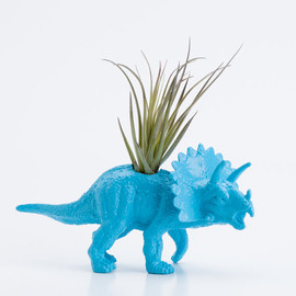 boygirltees - Small Dinosaur Planter with Air Plant Room Decor, College Dorm Ornament Plants and Edibles