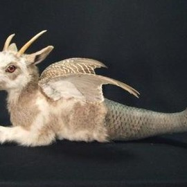 Capricorn Taxidermy