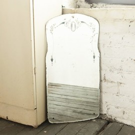 Flea Bag - Etched Bathroom Mirror