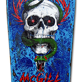 Powell Peralta - Mike McGill Deck