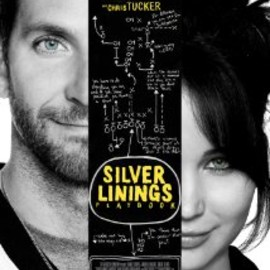 David O. Russell - Silver Linings Playbook (世界にひとつのプレイブック)