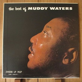 Muddy Waters - The Best Of Muddy Waters (Vinyl,LP)