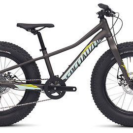 Specialized - FATBOY 20