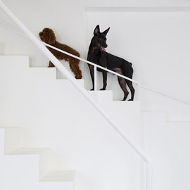 07Beach - staircase for dogs