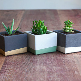 NystromGoods - Combo Deal: Three Small Color Block Concrete Planter Set