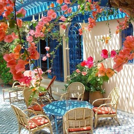 Bougainvillea  porch