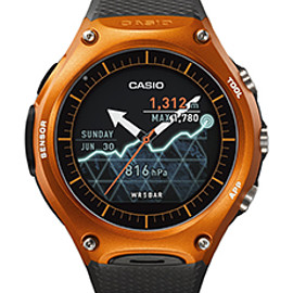 CASIO - WSD-F10