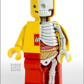 Jason Freeny - Lego Man Anatomical Sculpt