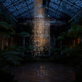 Light: Installations by Bruce Munro