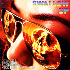 SEAGULL SCREAMING KISS HER KISS HER - SWALLOW UP ep