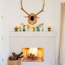 Beautiful fireplace designs.