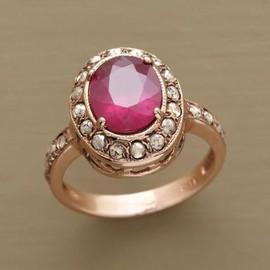 sundance - RIMMED RUBY RING
