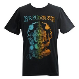 AIR JAM 2011 official - BRAHMAN Tee