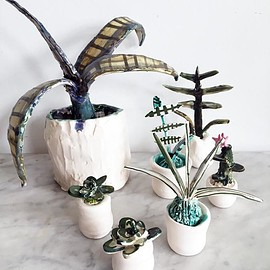 Meghan Sampson - Ceramic Plants
