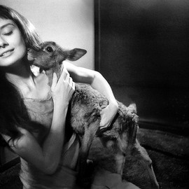 Audrey Hepburn with 'Ip - photo