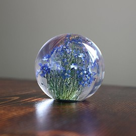 Landscape Products - Hafod Grange - Paperweight S #forget me not(A)