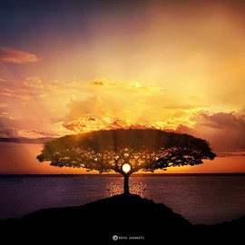Bess Hamiti - Sunset
