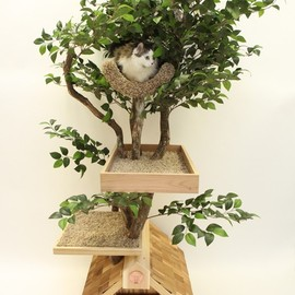 Etsy - 猫のツリーハウス(中) Adult (medium) Cat Tree House