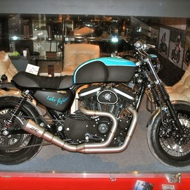 Stile Italiano - Lake Fighter / Harley Davidson  Sportster