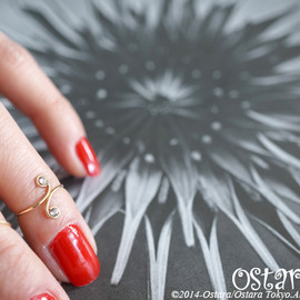 Ostara - 14k Gold Filled Nail and Knuckle Ring