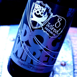 """BREWDOG / 8 wired - imperial pilsner """"DOGWIRED"""""""