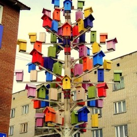 birdhouse city!!