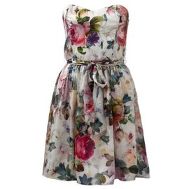 FOREVER NEW -  Rose Sun Dress