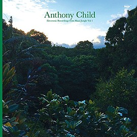 Anthony Child - Electronic Recordings from Mau