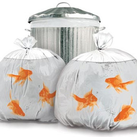 NOVELTY GOLDFISH TRASH BAGS