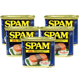 SPAM CAN BANK
