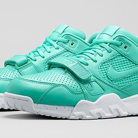 Nike - Air Trainer Subdued Collection: Nike Air Trainer 2 Premium
