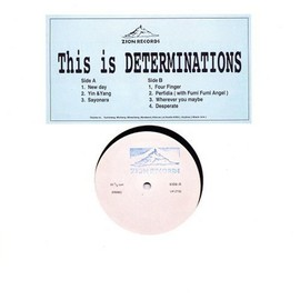 DETERMINATIONS - This is DETERMINATIONS