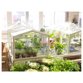 IKEA - ikea socker greenhouse for urban homes