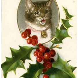 VIntage Kitty Christmas Cards - Cat cameo with holly