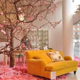 Loving tree and pink petals
