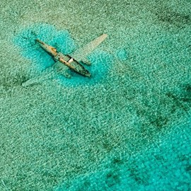 海に沈む飛行機、バハマ (via Submerged plane in the Bahamas. Photo by Bjorn Moerman [990x742] - Imgur)