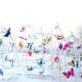 Sputnik - The Butter Flying Whimsical Fairy Poetic wire butterflies cage